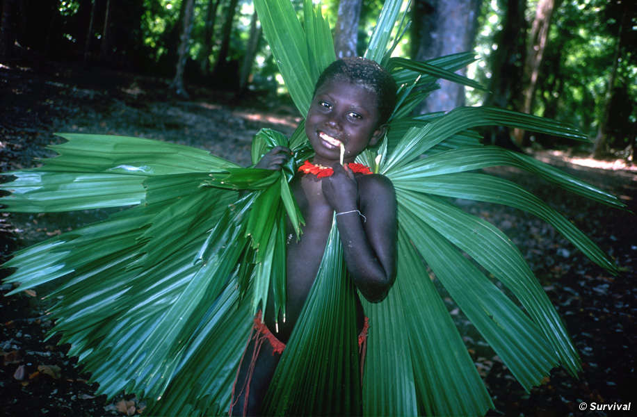 The Jarawa thatch their shelters with leaves from the forest. © Salomé/Survival