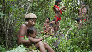 Pope Francis calls for protection of tribal peoples and their lands