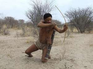 Bushmen put on staged 'hunts' for tourists, but in reality have now been banned from hunting.
