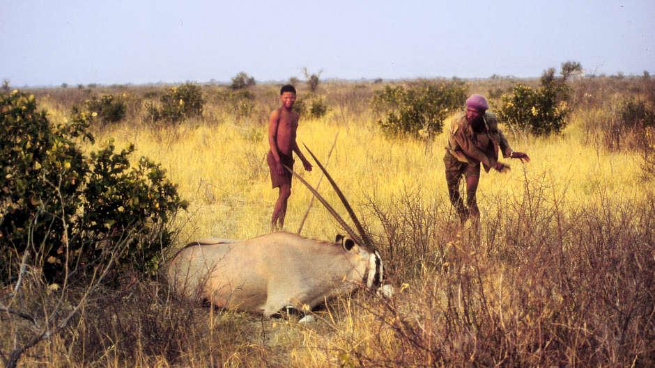 Het jachtverbod geldt voor alle inwoners van Botswana, behalve de rijke toeristen.