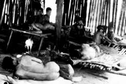 Aché Indians shortly after they were captured and brought out of the forest to the Aché Reservation. Paraguay, 1972.