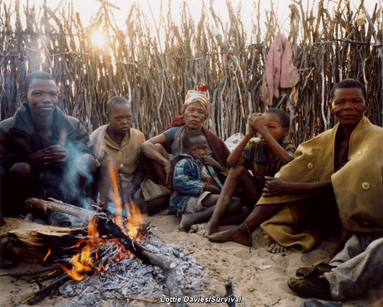 bushmen and botswana Bushmen trail ghanzi -- bw004 a wilderness non-participatory camping & lodging safari adventure through botswana, bushmen dance and walk in qae qare the okavango delta by mokoro (dugout canoe) and nature walks on the island, wildlife in their masses in moremi, savuti & chobe sunset cruise.