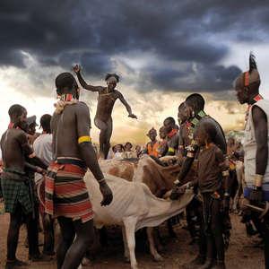 L'œuvre de l'un des finalistes : un homme de la tribu hamer de la vallée de l'Omo en Ethiopie saute habilement au-dessus d'une rangée de taureaux lors d'une cérémonie de mariage.