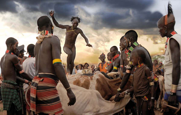 """One of the runners-up: a Hamer man in Ethiopia's Omo Valley skilfully jumping over a row of bulls as part of a wedding ceremony. """