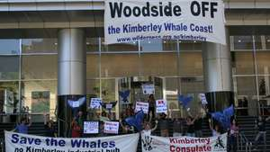 Woodside-banner-drop-17dec08-web_300_wide