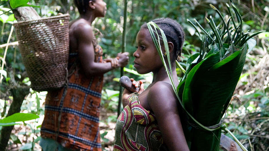 Wenn wir den Regenwald schützen wollen, müssen wir dafür kämpfen, dass er in den Händen indigener Völker bleiben kann.