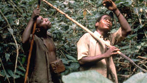 Legal analysis finds tribal peoples persecuted unjustly for 'wildlife crime'