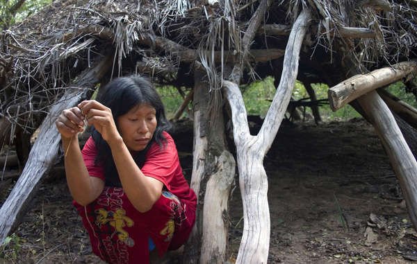 Guiejna, an Ayoreo woman forced to flee her house as bulldozers started clearing her forest home.