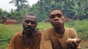 Survival International accuses WWF of involvement in violence and abuse