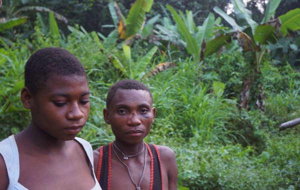 Molti Baka sono costretti a vivere ai margini delle strade. I tassi di alcolismo e di malattie come la malaria sono aumentati, mentre la qualità della loro alimentazione è peggiorata.