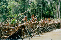 """An intricate wooden dam is at the heart of the Enawene Nawe's Yãkwa ritual."""