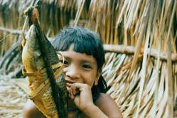 The Enawene Nawe catch their fish in traps and smoke them, Brazil.