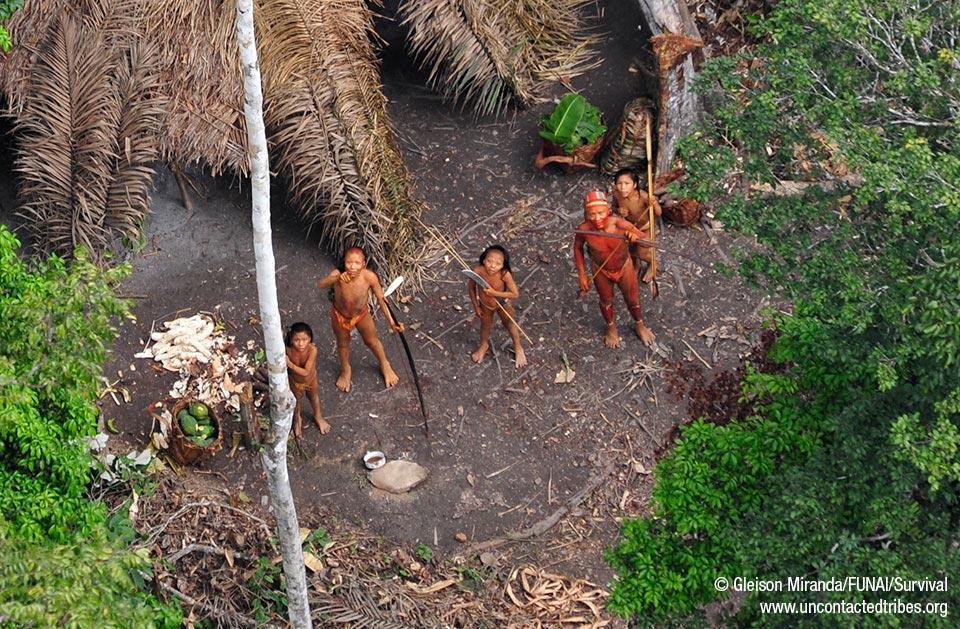 Le immagini mostrano una comunità prospera e forte con ceste piene di manioca e papaia appena raccolte nei loro orti.