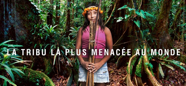 Brésil : Les Awá, la tribu la plus menacée au monde dans Amerique latine enews_header_fr