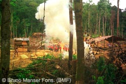 Malaysian police dismantle a previous Penan logging road blockade in 1993.