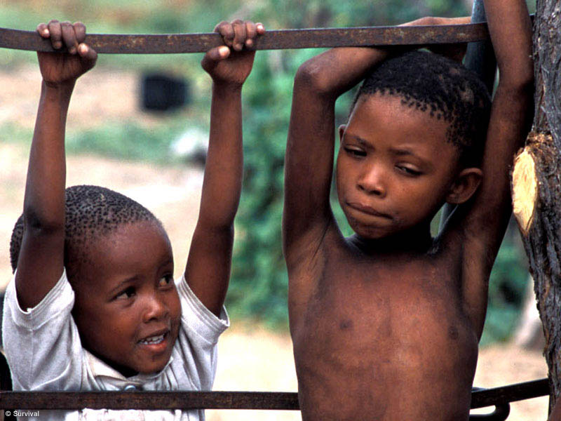 Bushman children, CKGR, Botswana 2004 © 2004 Stephen Corry/Survival