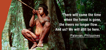Palawan_quote_cropped