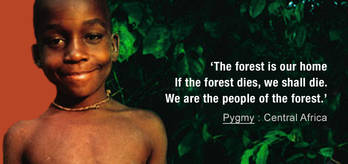 Pygmies-quote_cropped