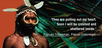 Papua-quote-2_cropped