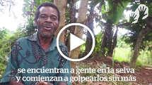Abusos de derechos humanos y caza de trofeos en Camerún