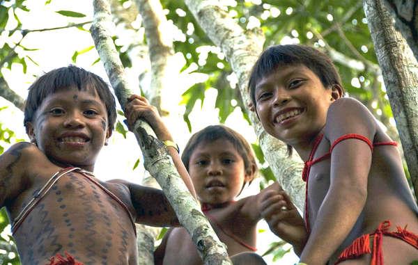 Alcuni popoli indigeni sono riusciti a impedire che degli estranei assumessero il controllo dell'educazione dei loro figli. Gli Yanomami e gli Enawene Nawe del Brasile, ad esempio, hanno mantenuto la loro autonomia e hanno sviluppato programmi educativi che si svolgono all'interno delle loro terre e alle loro condizioni, mediante insegnati propri abilitati.