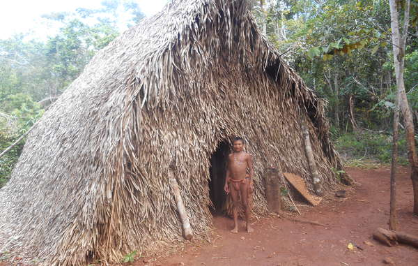 The Hoti, Eñepa and other affected tribes depend on their forest for their survival.