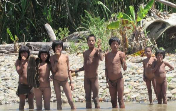 Up to 200 uncontacted Mashco Piro Indians have entered a local indigenous village.