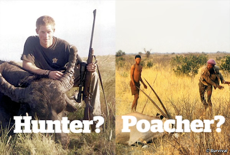 why hunting is possitive Positive -helps maintain certain species of wildlife by keeping the population from exceeding capacity -provides beneficial food source -hunters and sportsman provide millions every year to improve wildlife -large economic benefit to wild life conservation through hunting equipment taxes.