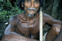 Many Wanniyala-Aetto have been fined for hunting in their forest; some have been shot.