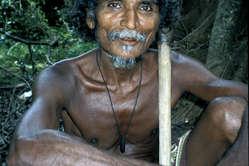 Muchos wanniyala-aettos han sido multados por cazar en su selva. Algunos han recibido disparos.