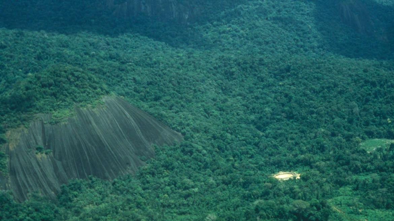 Die Yanomami verwalten und hüten eines der größten Gebiete geschützten Regenwaldes weltweit.