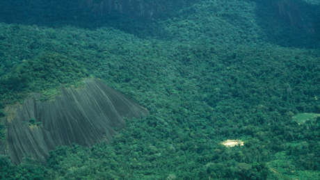 The Yanomami manage and care for one of the largest areas of protected rainforest in the world.