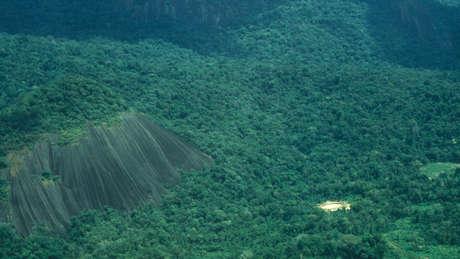 Les Yanomami prennent soin d'une des plus grandes zones de forêt tropicale protégée au monde.