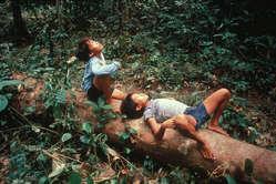 Enfants penan dans leur forêt, Sarawak, Bornéo.