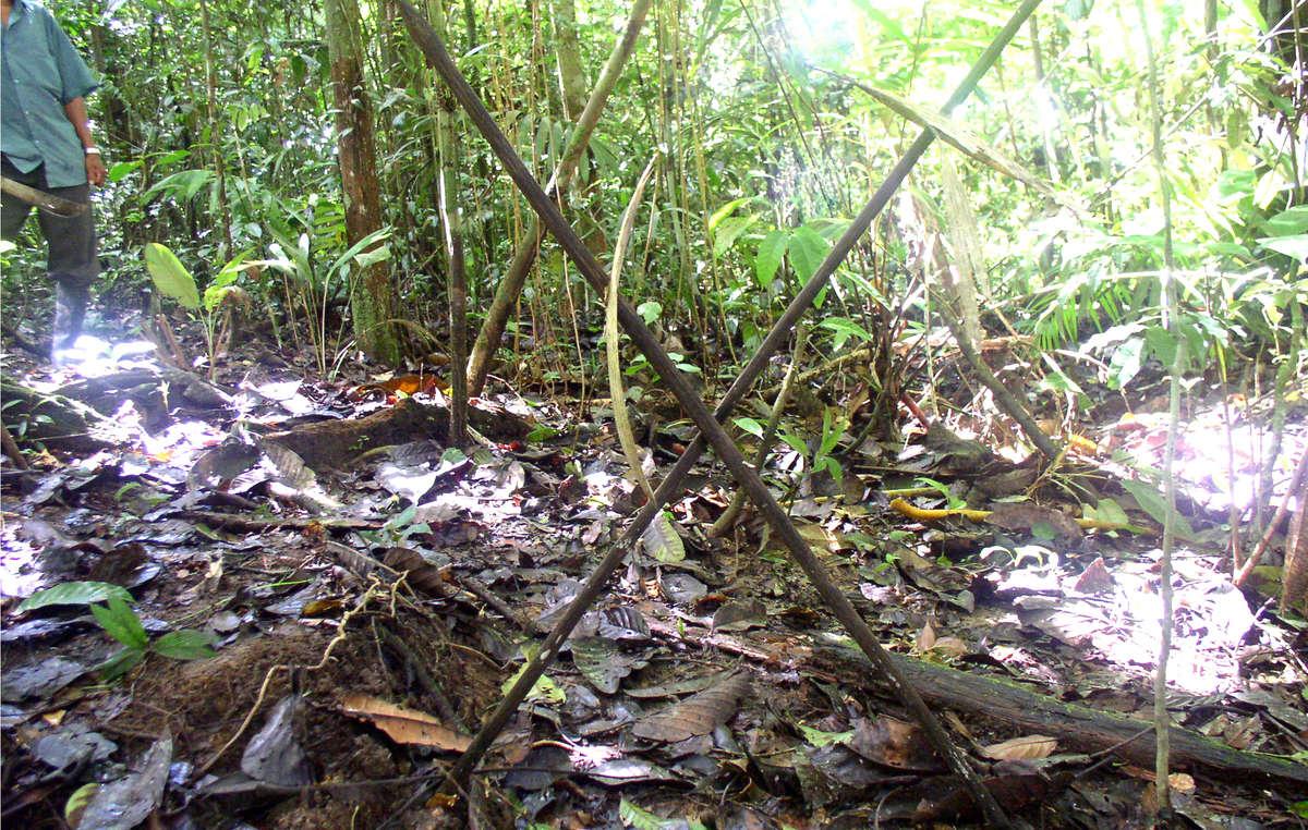 Lanças cruzadas foram encontradas no norte do Peru – uma advertência para que potenciais intrusos mantenham distância