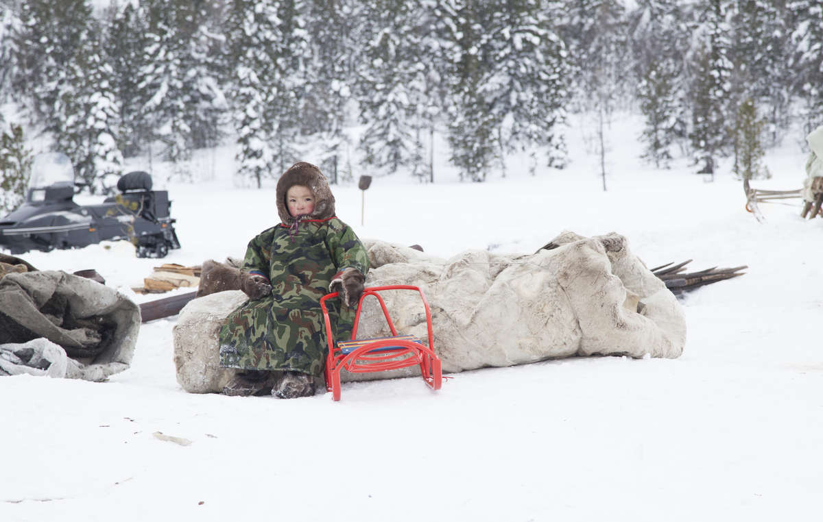 Tribal peoples in Russia, such as the reindeer herding Nenets, have borne the brunt of the exploitation of their lands for oil and gas and are often the last barrier to the destruction of the Arctic.
