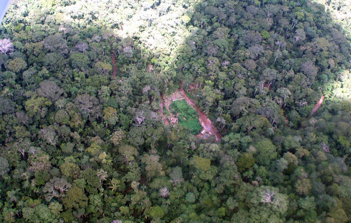 Photo aérienne d'un campement illégal de bûcherons.