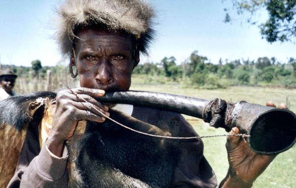 Gli Ogiek hanno visto molta parte della loro foresta natale distrutta da coloni e da taglialegna illegali.