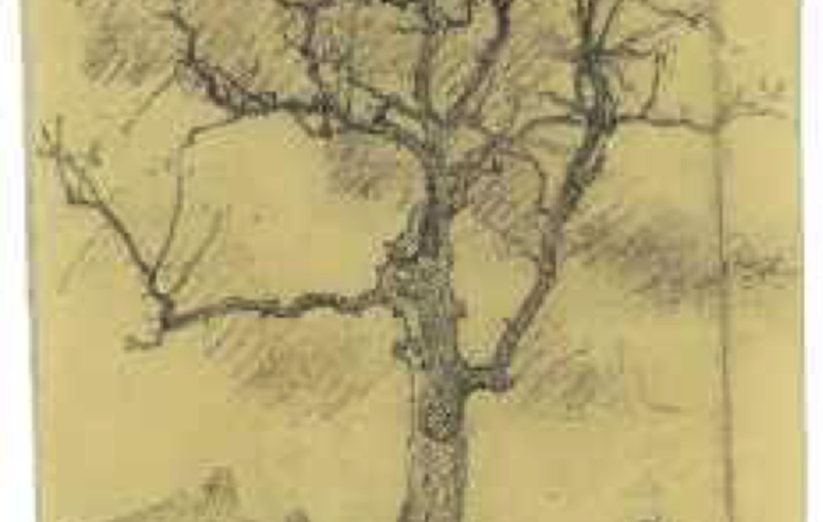 French prisoner's sketch of Goethe's oak in Buchenwald.