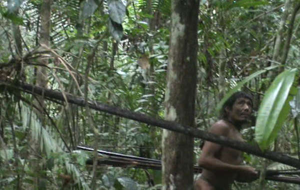 The Kawahivas land is being targeted by illegal loggers and cattle ranchers