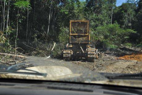 Trator-abrindo-estrada-para-explorao-ilegal-de-madeira-na-ti-kawahiva-do-rio-pardo_460_landscape