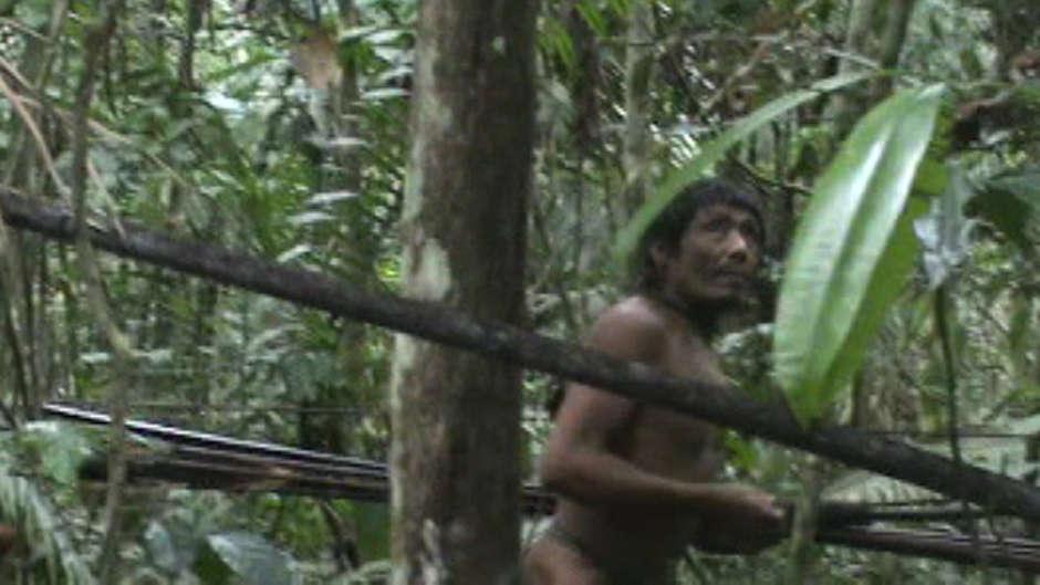 Survival International fordert unverzüglich erhöhten Polizeischutz für eines der am stärksten bedrohten unkontaktierten Völker der Erde