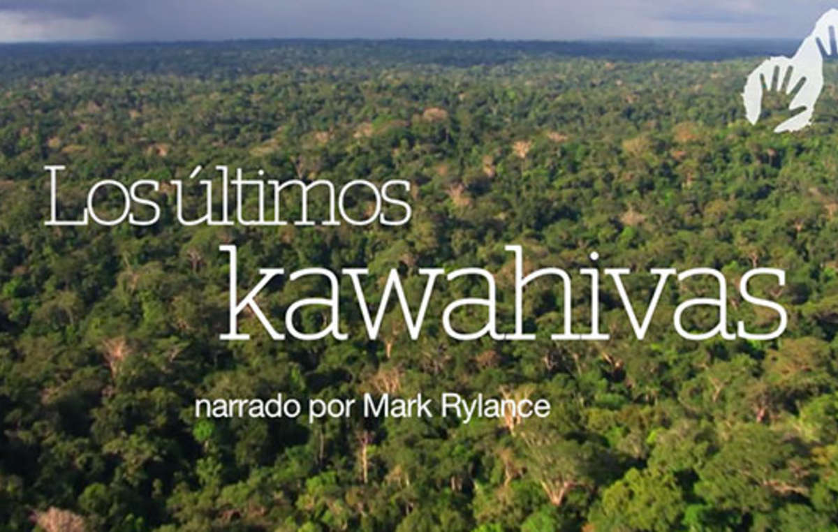 Survival proyectó su vídeo Los últimos kawahivas durante el Festival de Cine y DDHH de Barcelona para denunciar que si no se respetan los derechos territoriales de este pueblo indígena aislado, su genocidio se consumará.