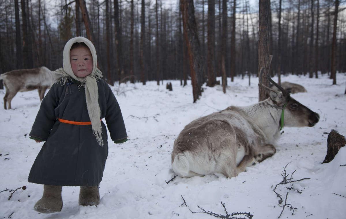 Les Doukha se déplacent à dos de rennes dont ils boivent le lait. Ils dépendent de la chasse et de la cueillette pour se nourrir.