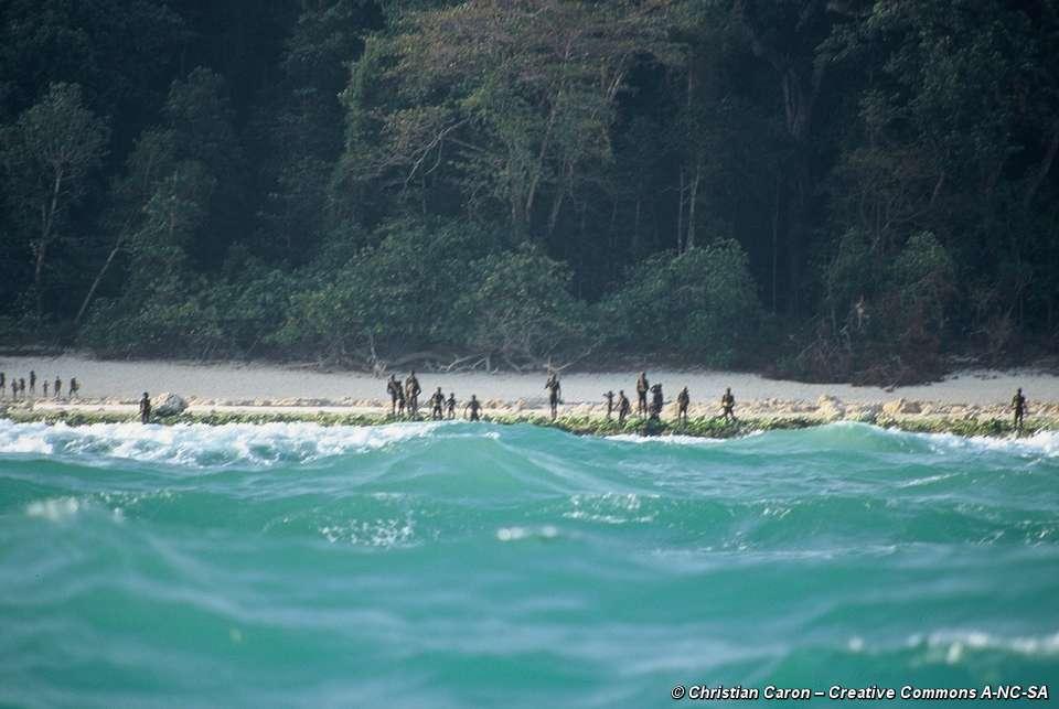 Survival Island Francais