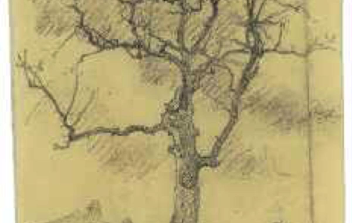 Zeichnung eines französischen Gefangenen von Goethes Eiche in Buchenwald