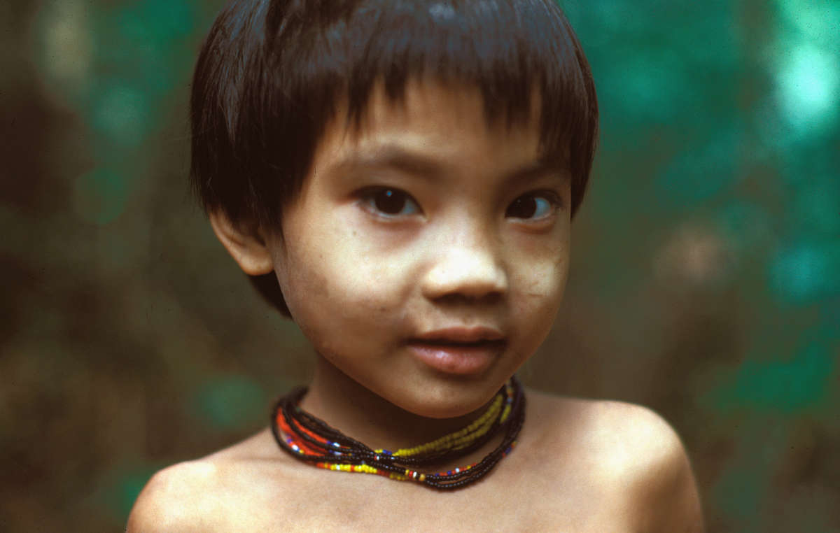 Los penan han vivido en las selvas de Sarawak desde tiempos inmemoriales