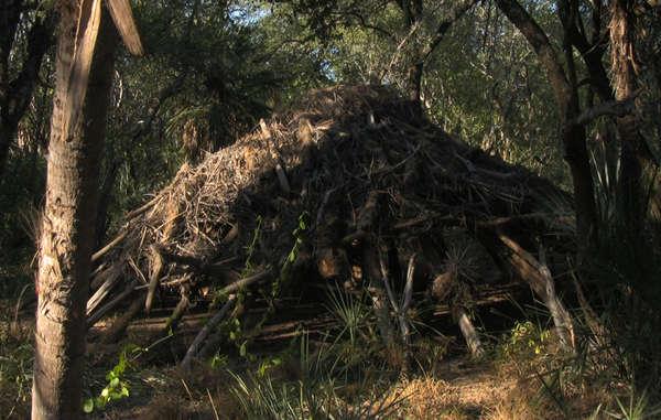 Una casa abandonada en el Chaco paraguayo perteneciente a indígenas aislados ayoreo-totobiegosodes.