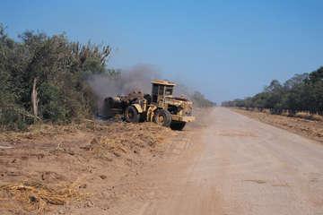 Ein Bulldozer planiert das Land der Ayoreo-Totobiegosode in Paraguay