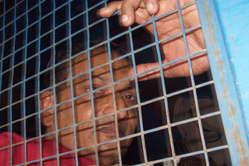 Binayak Sen, défenseur des droits de l'homme, condamné à la réclusion à perpétuité.